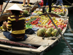 vietnam halong bay fishing fruit market